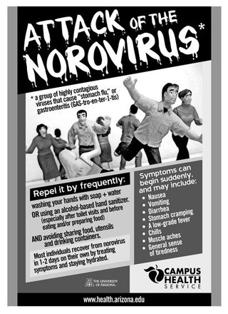 Large_FLU_Norovirus_Flier