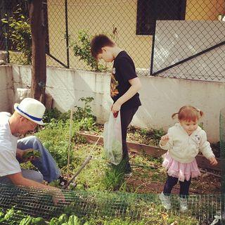 my family gardening